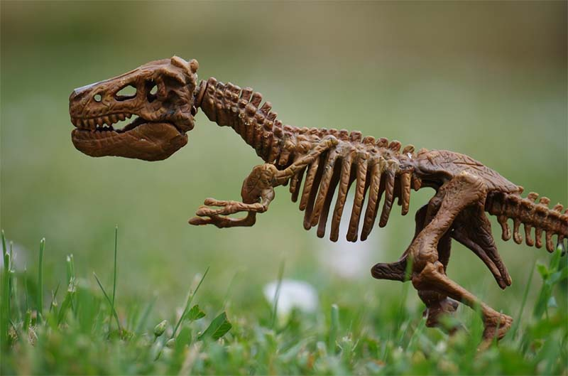 Is Financial Planning A Chore? Blame Your Prehistoric Ancestors…….